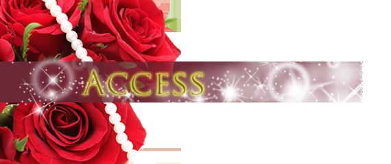 access_main